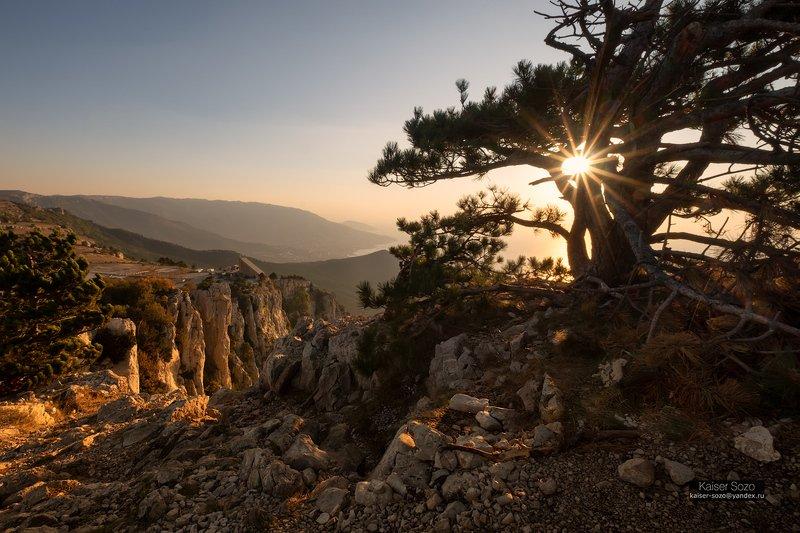 крым, ай-петри, горы, камни, сосны, рассвет Вопрекиphoto preview