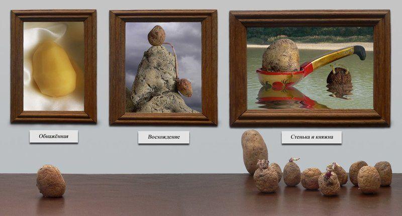 В художественном музееphoto preview