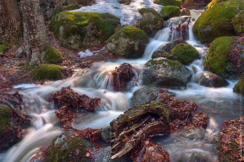 весна, ручей, крым, поток, вода Весенний ручей в Крымуphoto preview