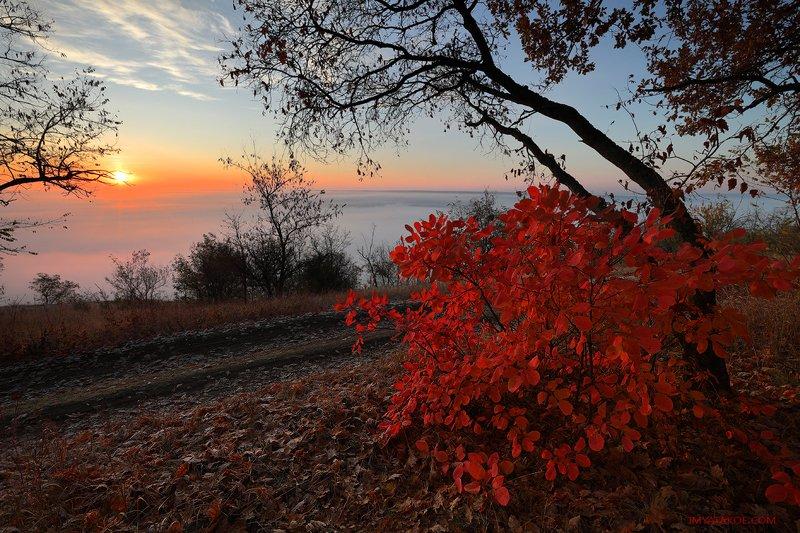 Осень хоросоphoto preview