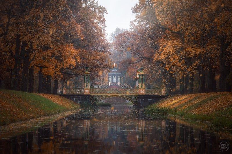 пушкин, осень, туман, парк Осеннее утро у Китайских мостиковphoto preview