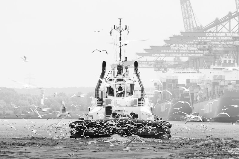 water, elbe, river, hamburg, germany, schlepper, ships, bugsier Schlepperphoto preview