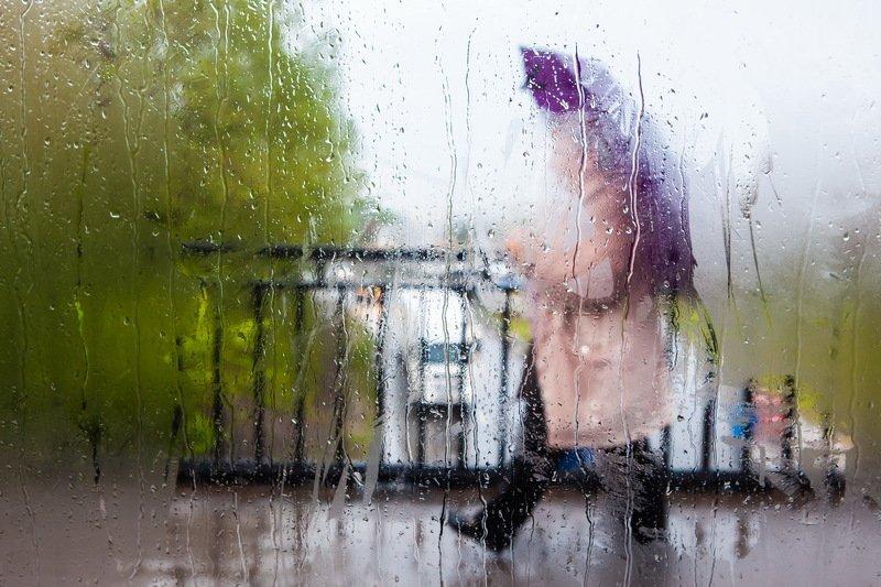 дождь троллейбус Дождливый маршрут троллейбуса №4photo preview