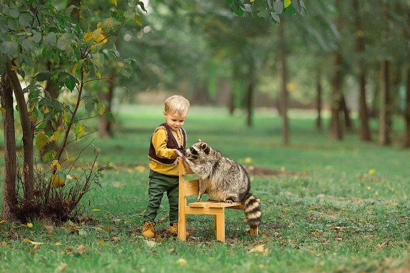 фотограф, зеркальный фотоаппарат canon mark iii, фотопрогулка, мальчик, енот, закат, ребенок, детская фотосессия, детский фотограф, малыш, счастье, радость, дети на фото, семейная фотография, любовь, фотосессии с животными, восторг *****photo preview