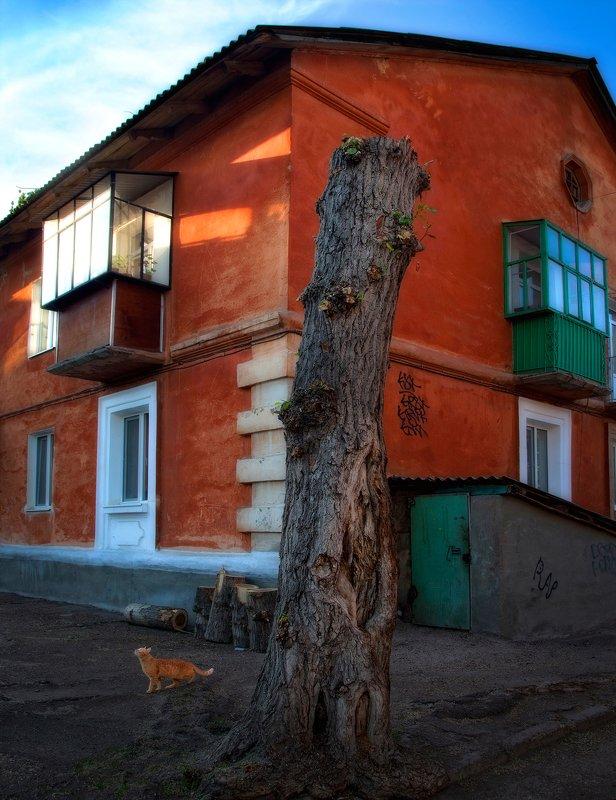 город,двор,дома,старый,уютный,кот Дворик,которого уже нет 6photo preview