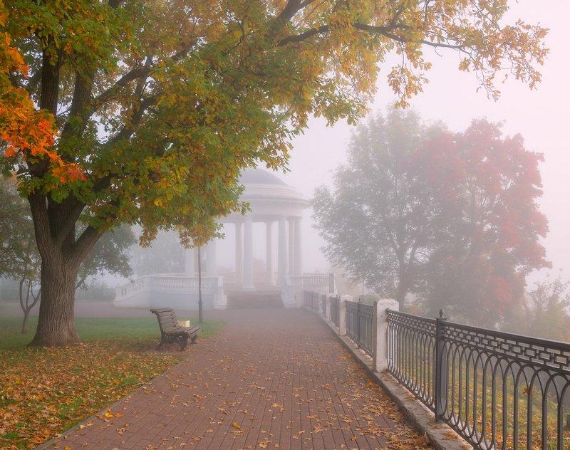 утро туман осень сентябрь Пушкинская осень.photo preview