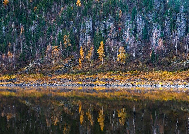 эвенкия, подкаменная тунгуска, суломайские столбы, река, отражение, осень, лес, тайга Суломайские столбыphoto preview