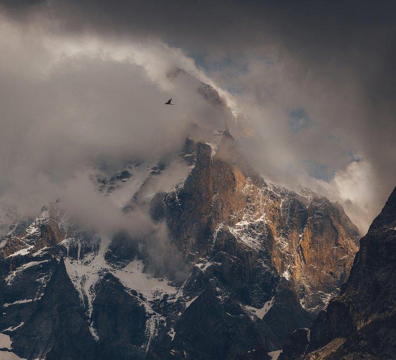 ушба, ушбинский ледник, сванетия, грузия Ушбаphoto preview