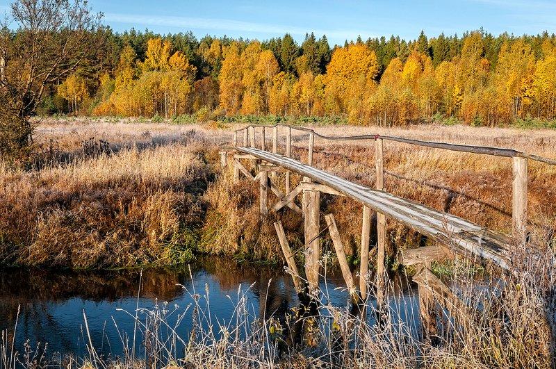 утро, река, морозец, иней, осень, солнце Яркое осеннее настроениеphoto preview