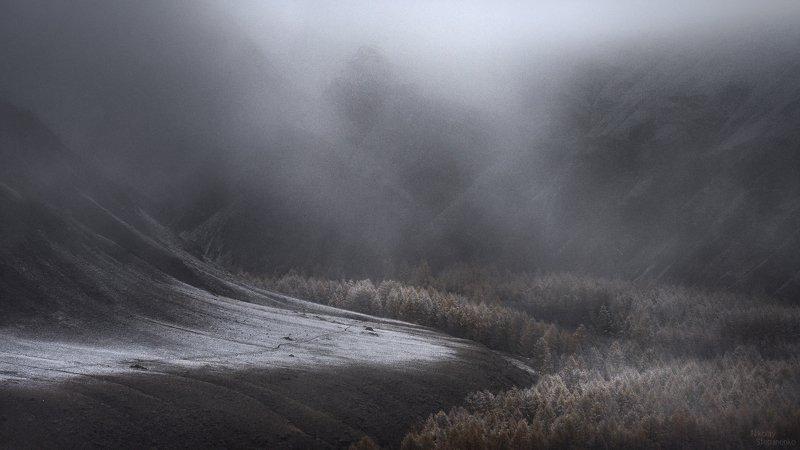 алтай, горы, чуйская степь, туман, снег Эфемерностьphoto preview