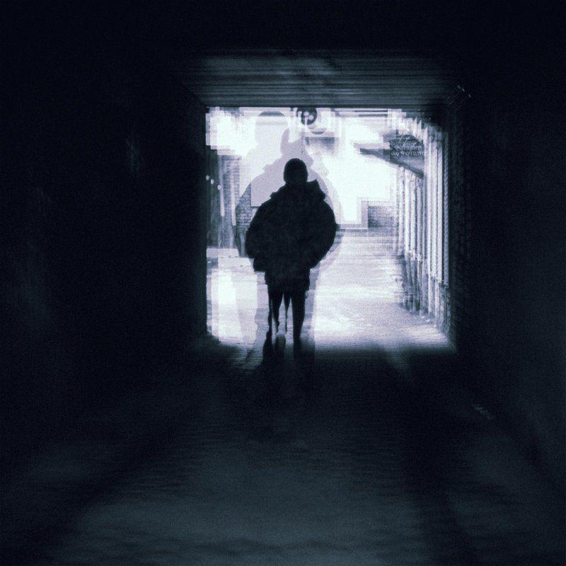 жанр, черно, белое Hide itselfphoto preview