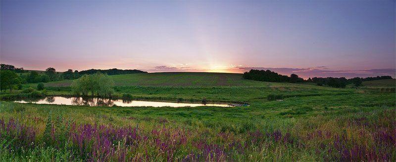 село, поле, ставок, закат, солнца, полевые, цветы Сельские  закатыphoto preview