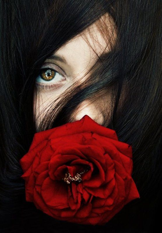 Красная роза - царица цветовphoto preview