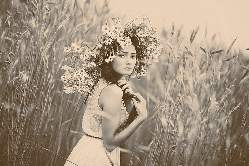 портрет,девушка,поле,цветы,лето ***photo preview