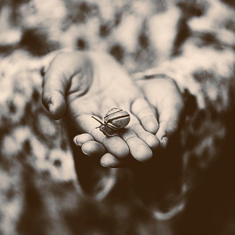 руки,улитка,ч/б ***photo preview