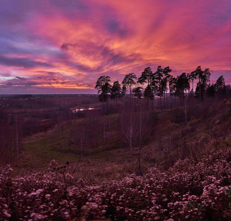 закат,подмосковье,осень,небо,панорама,сумерки,сухоцветы,московская область,красный Полыхающее небо октябряphoto preview