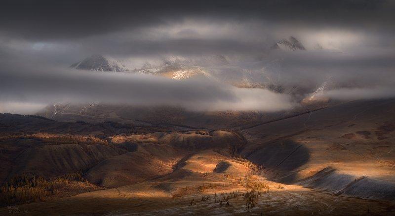 алтай, горы, курай, курайский хребет, облака, рассвет photo preview
