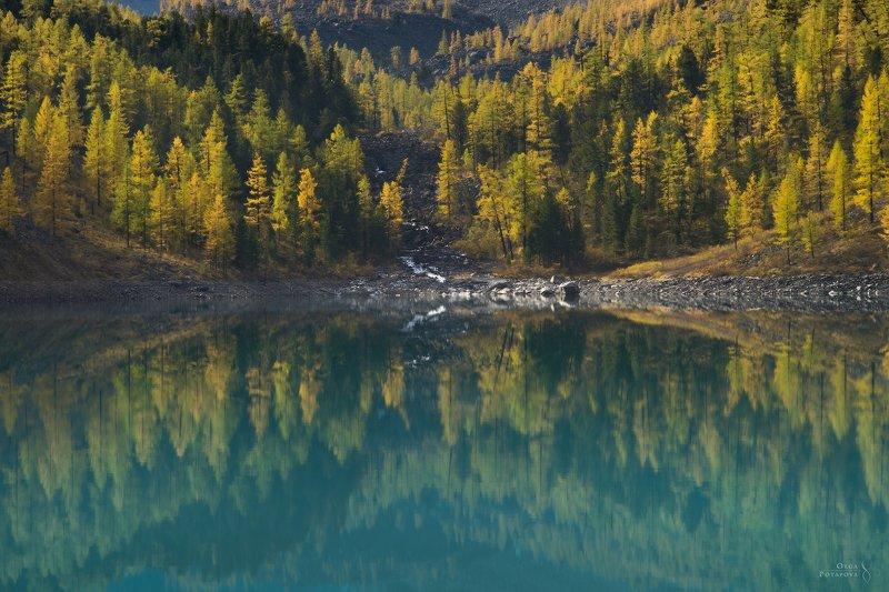 алтай, шавлинское озеро, голубая вода, отражения, зеркало, золотая осень, абстракция Зеркальный мир Шавлинского озераphoto preview