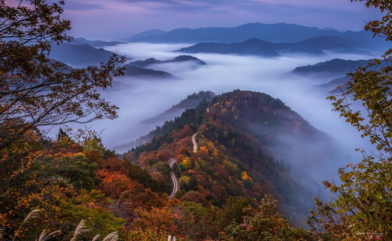 nature landscape japan mountain morning  autumn colors foggy 『 Path to Heaven 』photo preview
