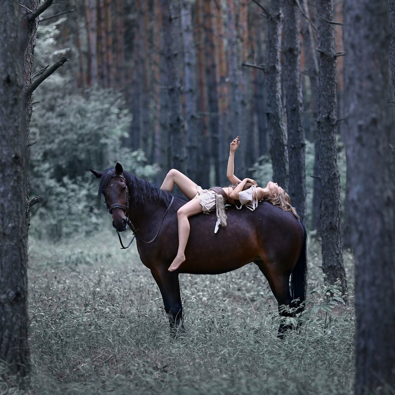 амазонка, лошадь, девушка на лошади, доверие, сосновый лес Амазонкаphoto preview