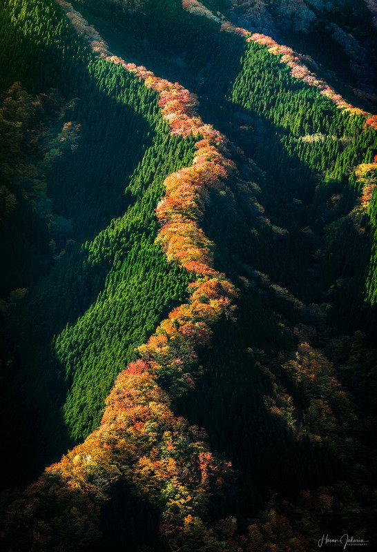 nature landscape japan mountain morning nara autumn colors Miracle Valley Namegophoto preview