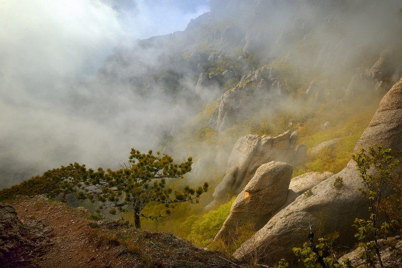 крым, природа, горы, туман В долине привиденийphoto preview