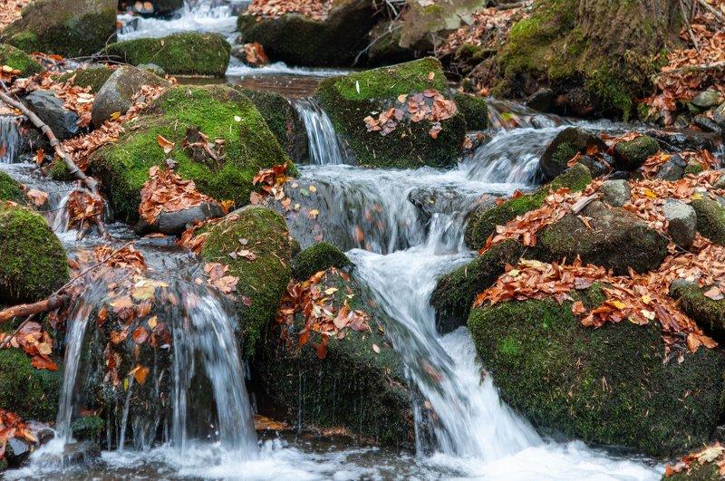 Есенна рекаphoto preview