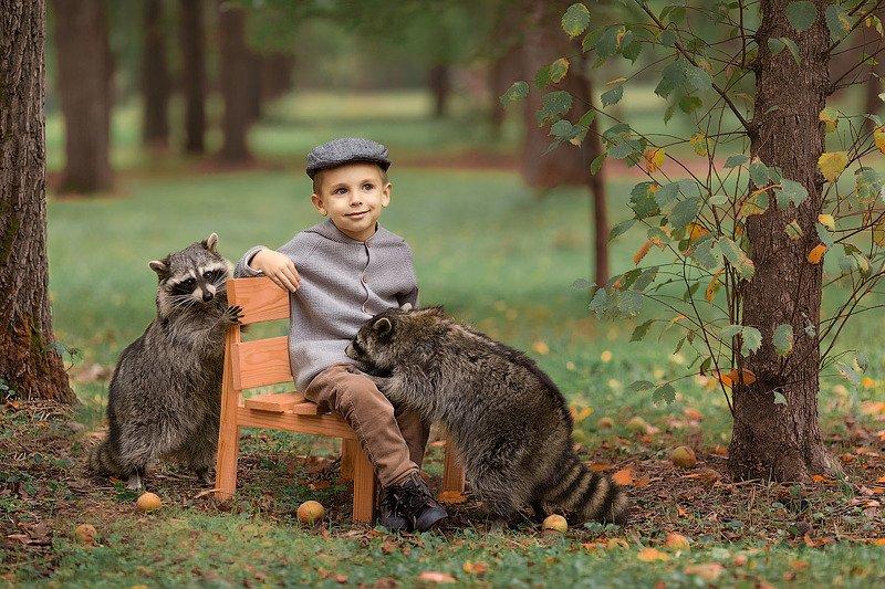 фотограф, зеркальный фотоаппарат canon mark iii, фотопрогулка, мальчик, осень, закат, ребенок, фотосессия с животными, детский фотограф, малыш, енот, енотик, счастье, радость, дети на фото, семейная фотография, любовь, детская фотосессия, восторг Друзьяшкиphoto preview