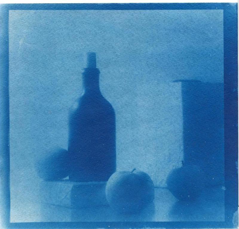 cyanotype, , print ***photo preview