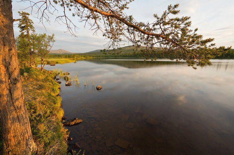 кольский, полуостров, лето, вируайвенч В окрестностях Вируайвенчаphoto preview