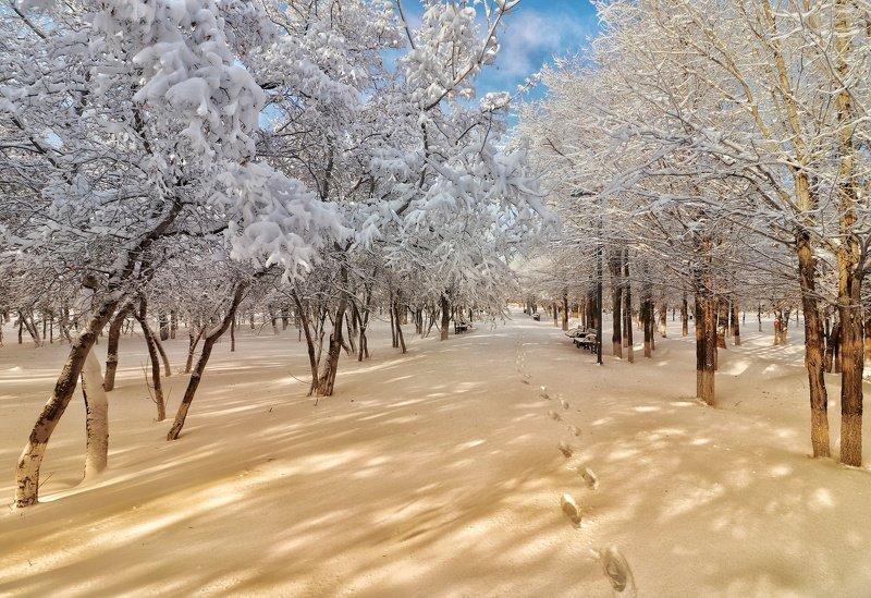 Зимова Казка...photo preview
