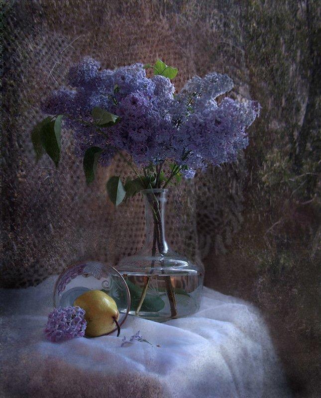 сирень, ваза, цветы Сиреньphoto preview