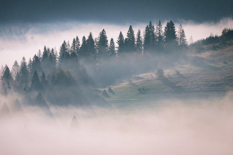 карпаты. осень. туман. рассвет Карпатыphoto preview