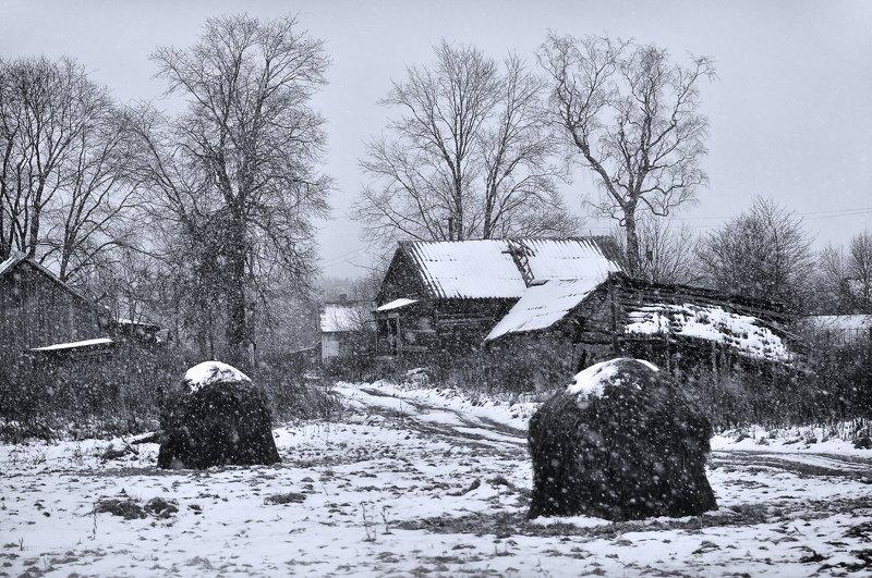 снег, село, сено Ноябрьphoto preview
