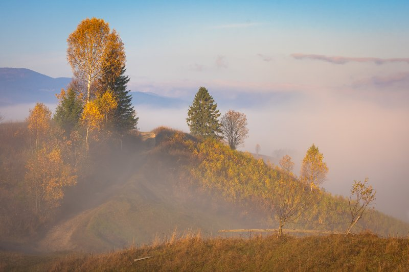 карпаты., осень., туман., рассвет Карпаты. Осенние тропыphoto preview
