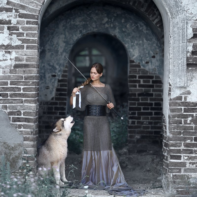 замок, меч, кольчуга, маламут, аляскинский маламут, девушка в кольчуге, девушка с мечом, отрезать косу, собака воет, война, на войну, перед боем photo preview