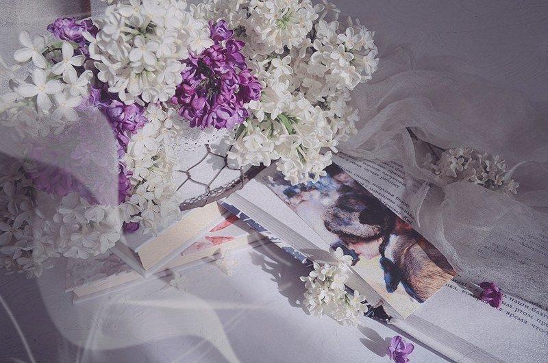 Весна сирень книга натюрморт радость любовь  Так хорошо... photo preview