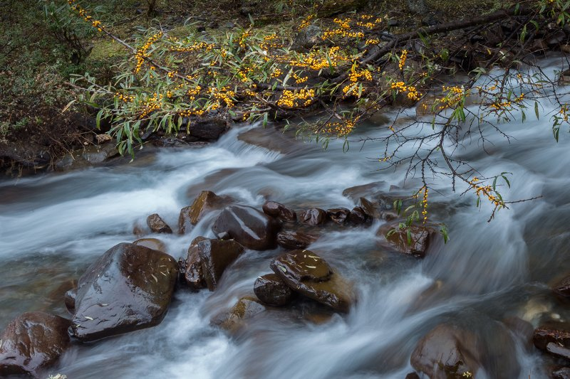 The stream of autumnphoto preview