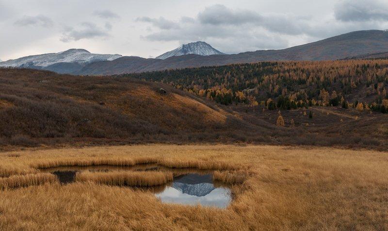 горный алтай, улаганский перевал Окоphoto preview