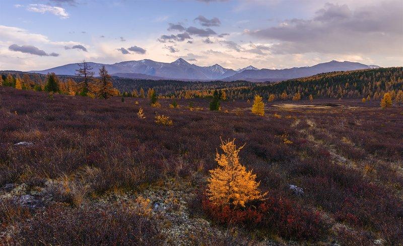 Осенний вечер...photo preview