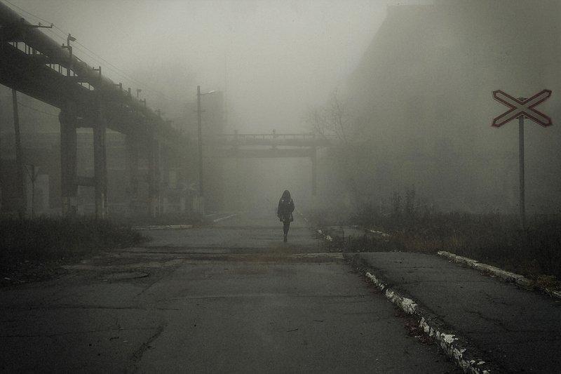 В туманную надеждуphoto preview