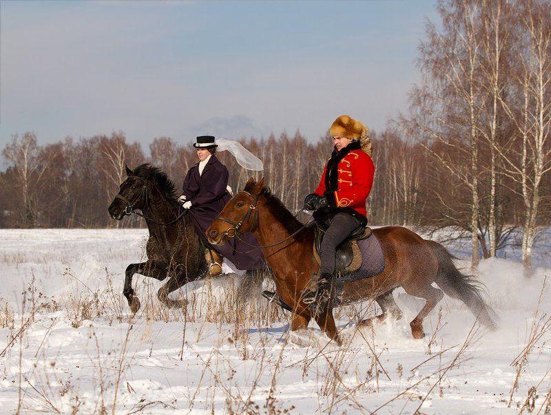winter, зима, кони, лошади , всадник Зимние забавыphoto preview