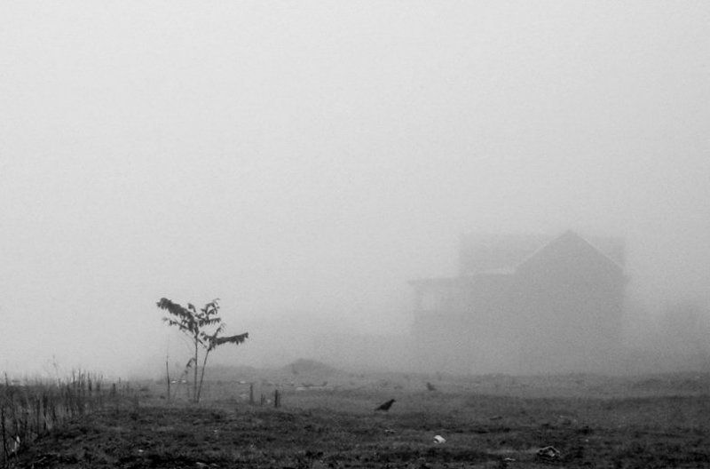 Здесь живёт туманphoto preview