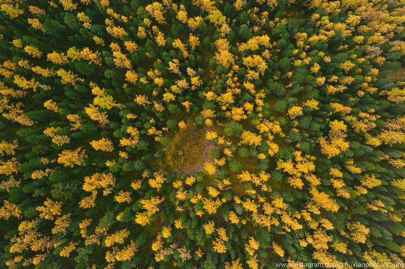 Осень Алтайphoto preview