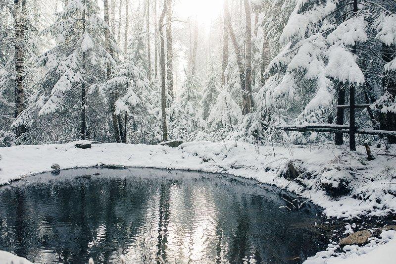 лес, зима, снег, природа. пейзаж, пруд, урал, златоуст photo preview