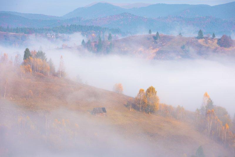 карпаты. осень. туман. рассвет Одинокий домик в туманеphoto preview