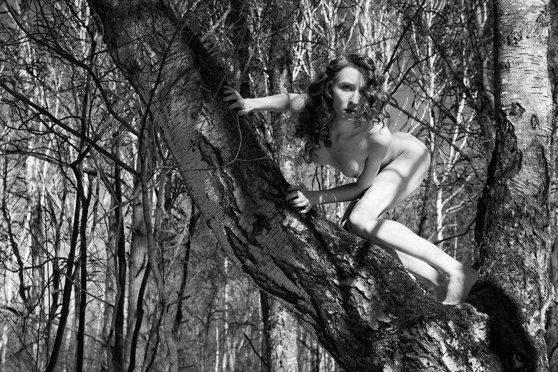 girl, woman, арт, женщина, nude, ню, девушка, модель, model, art Хищник | Predatorphoto preview