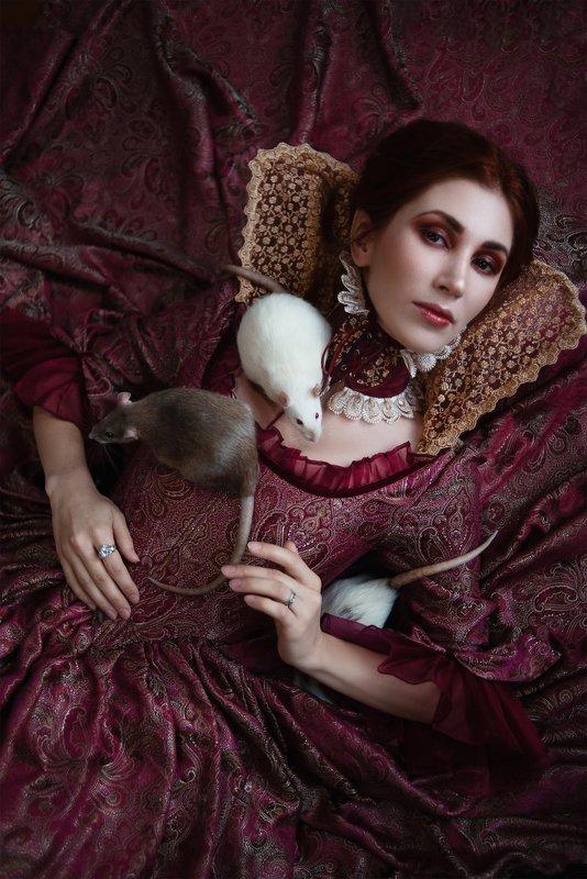 Крысиная королеваphoto preview