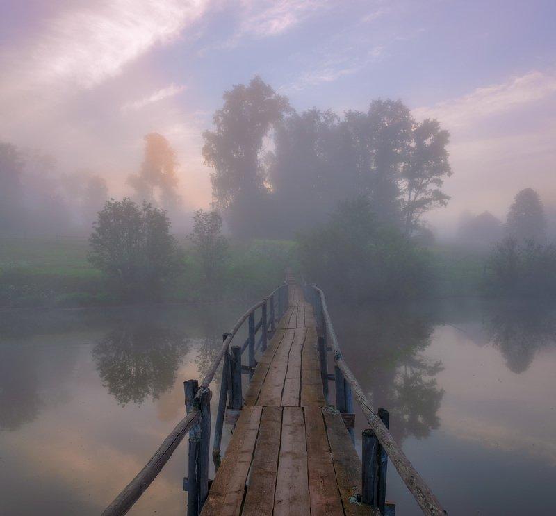 утро туман мостик Туманным утром на старом мостике.photo preview