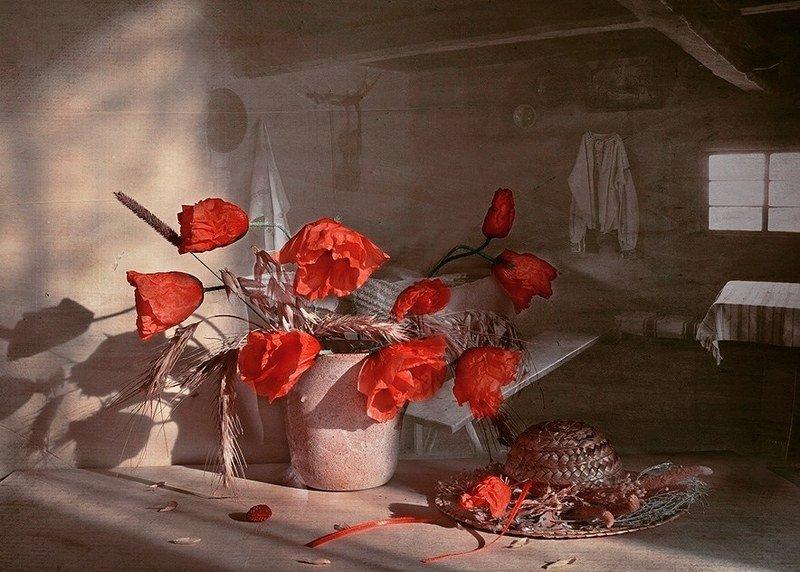 Натюрморт лето маки соломенная шляпка комната окно радость любовь  Уютный вечерphoto preview